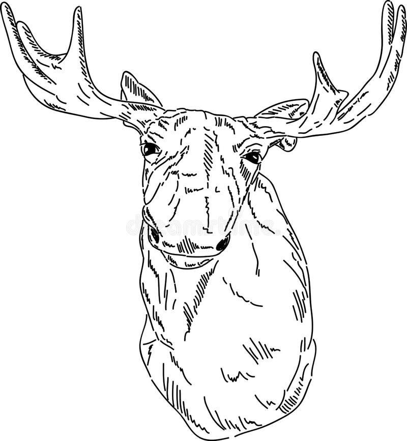 Verticale de Cariboo illustration libre de droits