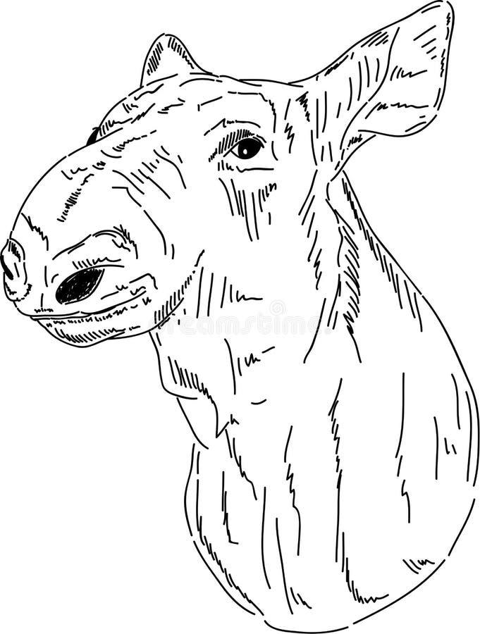 Verticale de Cariboo illustration de vecteur