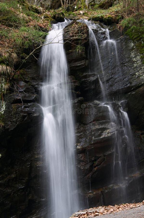 Download Verticale De Cascade à écriture Ligne Par Ligne Image stock - Image du waterfall, extérieur: 725009