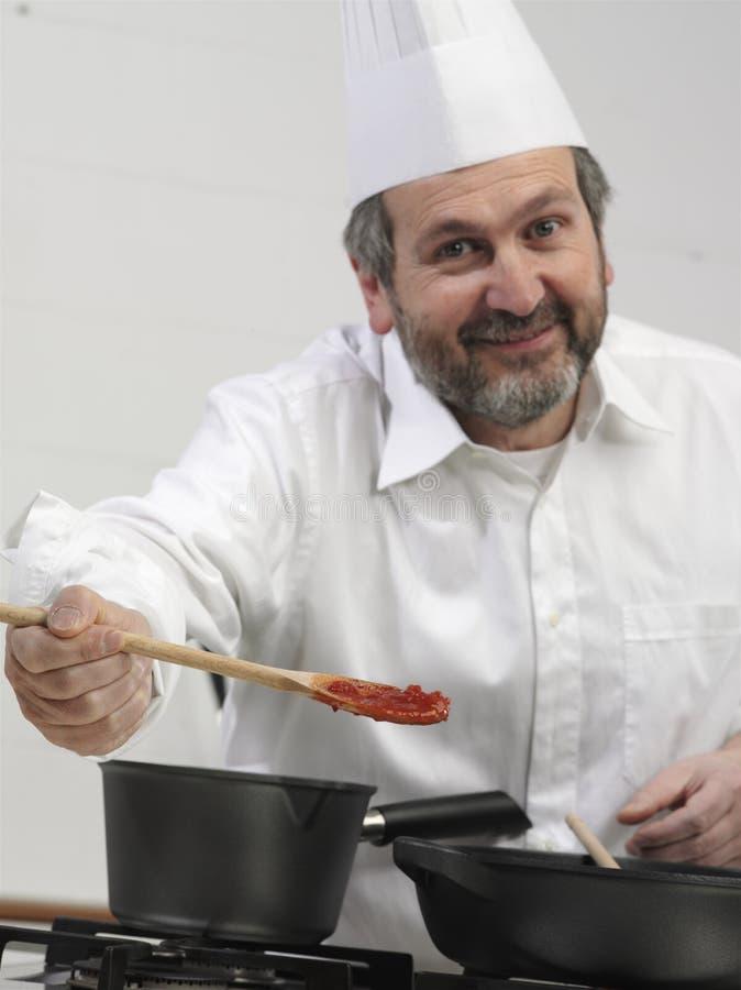 verticale de cuisinier image stock