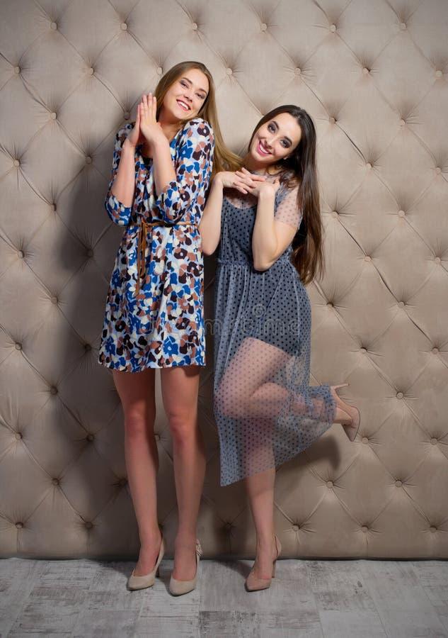Verticale de deux jeunes femmes image stock