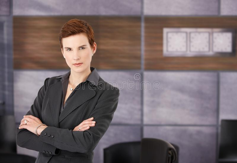Verticale de femme d'affaires déterminée images stock