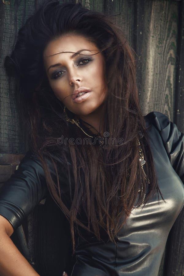 Verticale de femme de brunette photos stock