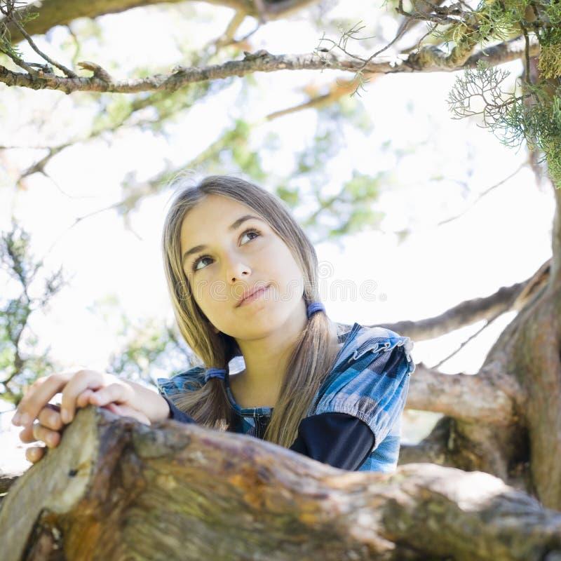 Verticale de fille de Tween dans l'arbre photo libre de droits