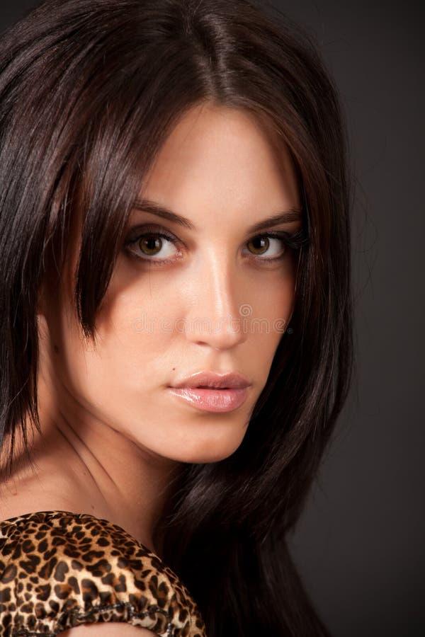 Verticale de fille sexy de brunette attirant image stock