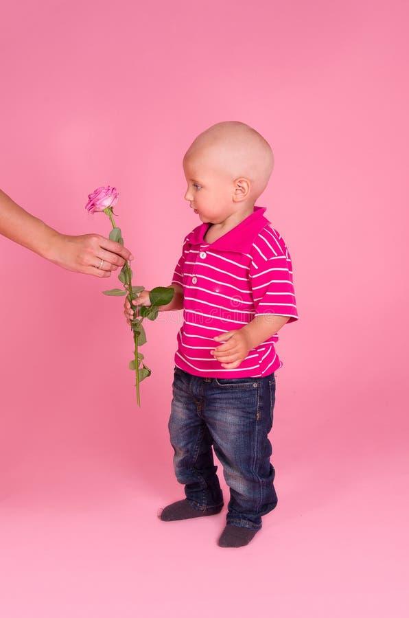 Verticale de garçon avec une rose à disposition photographie stock libre de droits