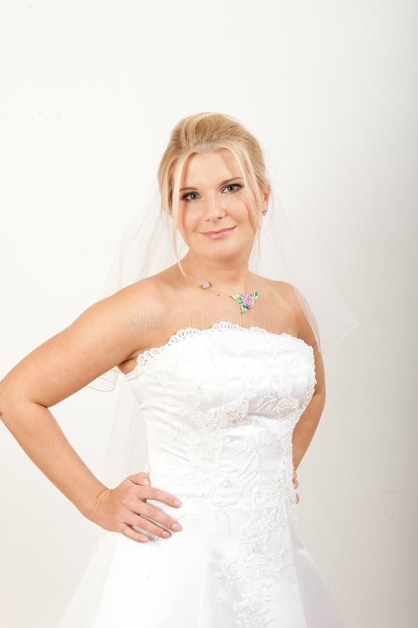 Verticale de jeune jolie mariée avec le voile image libre de droits