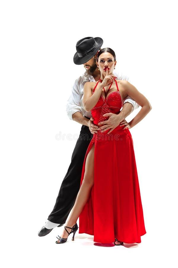 Verticale de jeunes danseurs de tango d'élégance D'isolement au-dessus du fond blanc photos stock