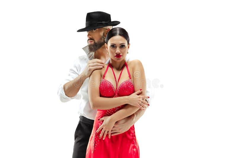 Verticale de jeunes danseurs de tango d'élégance D'isolement au-dessus du fond blanc photographie stock