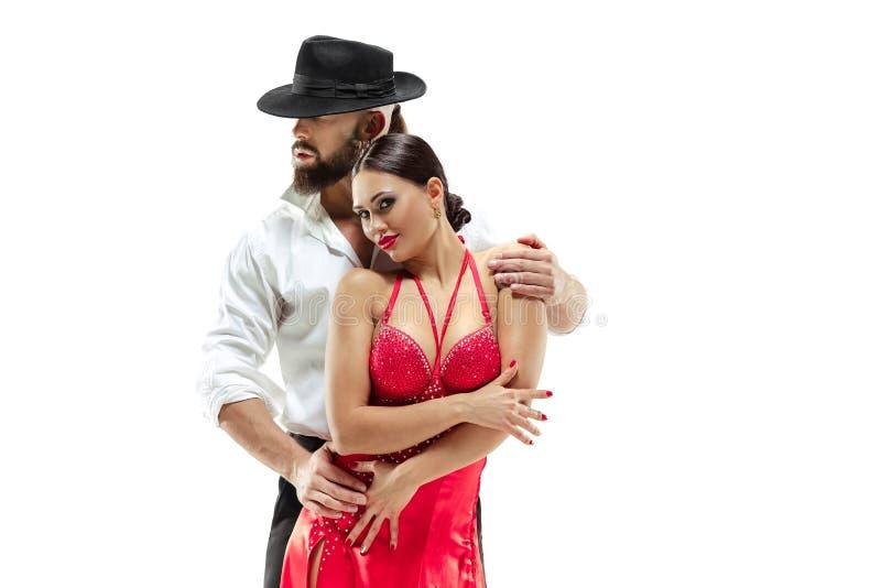 Verticale de jeunes danseurs de tango d'élégance D'isolement au-dessus du fond blanc photo libre de droits