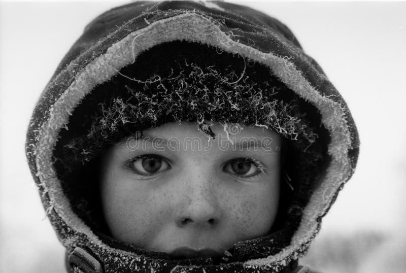 Verticale de l'hiver image libre de droits