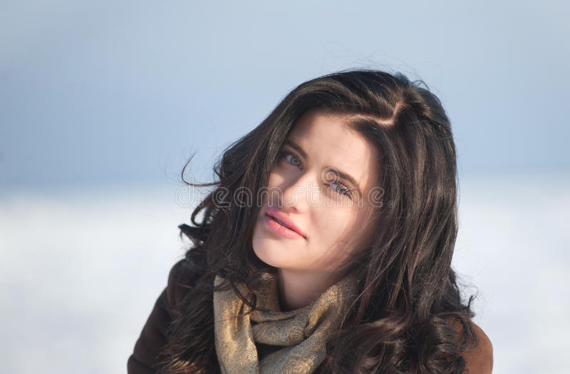 Verticale de l'hiver d'une fille de brunette images stock