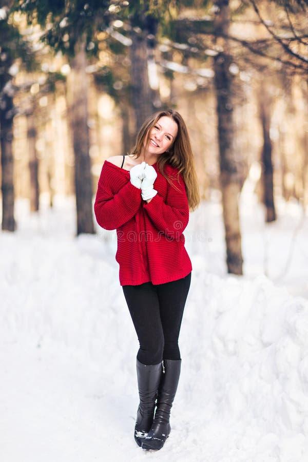 Verticale de l'hiver de jeune beau femme Concept froid de mode de beauté d'hiver de neige photos stock
