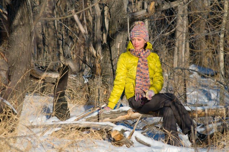 Verticale de l'hiver de la fille photo stock