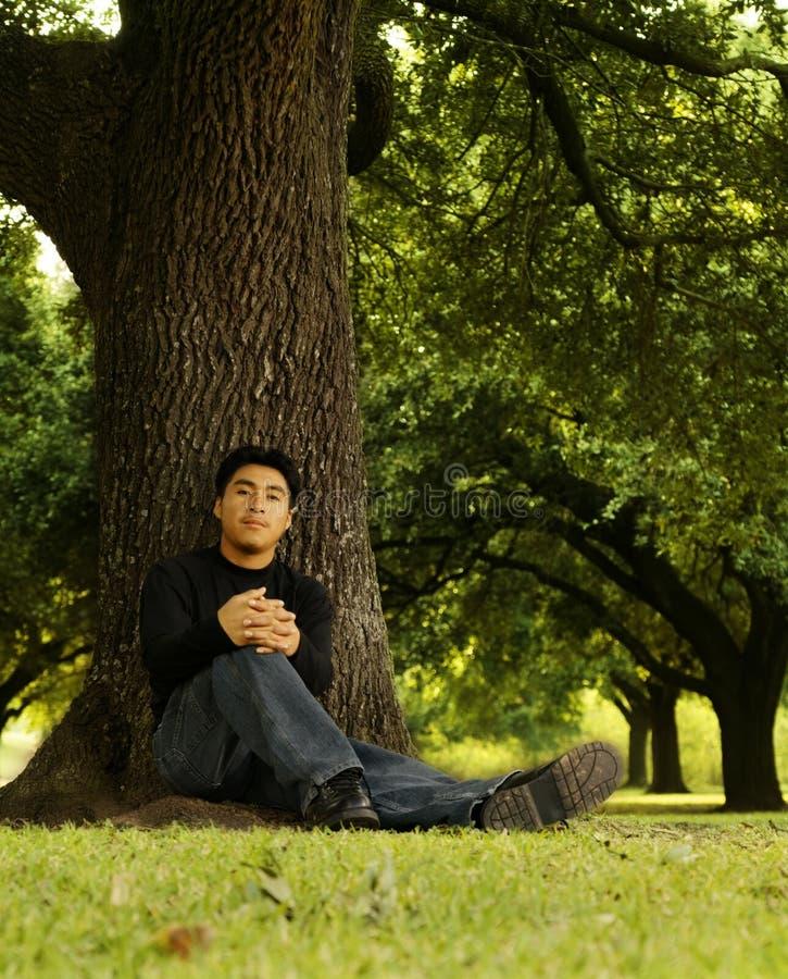 Verticale de l'homme se reposant par Tree 2 photos libres de droits
