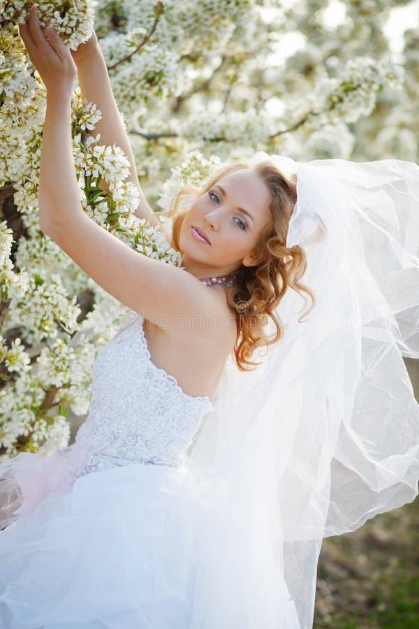 Verticale de mariée de source photographie stock