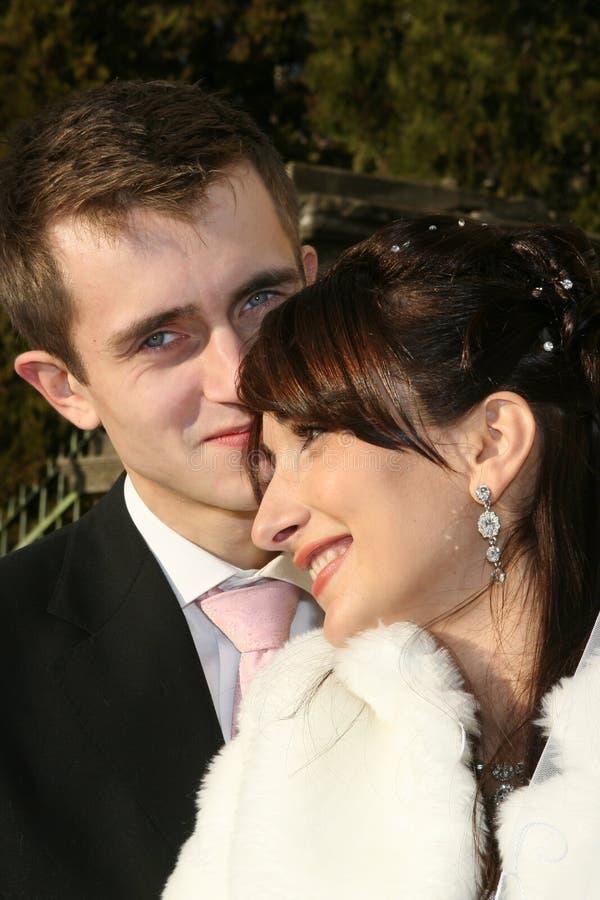 Verticale de mariage images stock