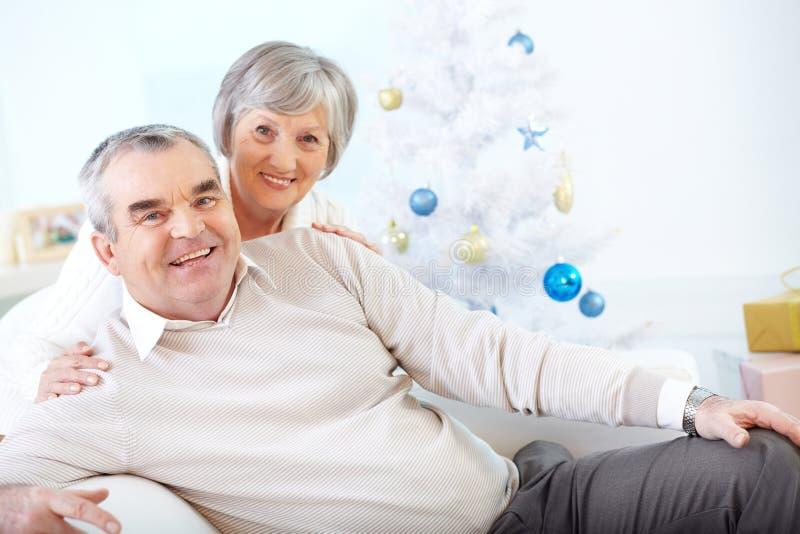 Verticale de Noël photos libres de droits