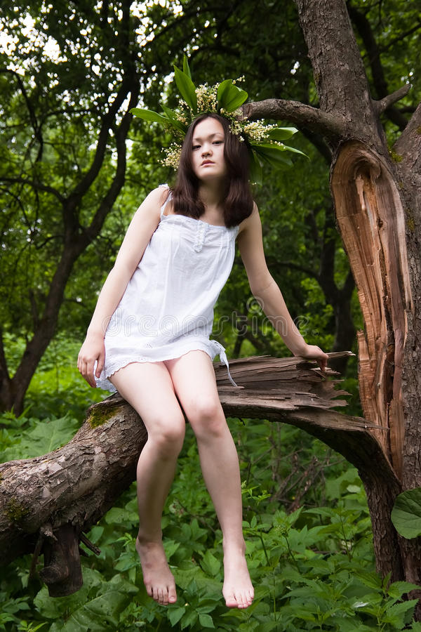 Verticale de nymphe de forêt image libre de droits