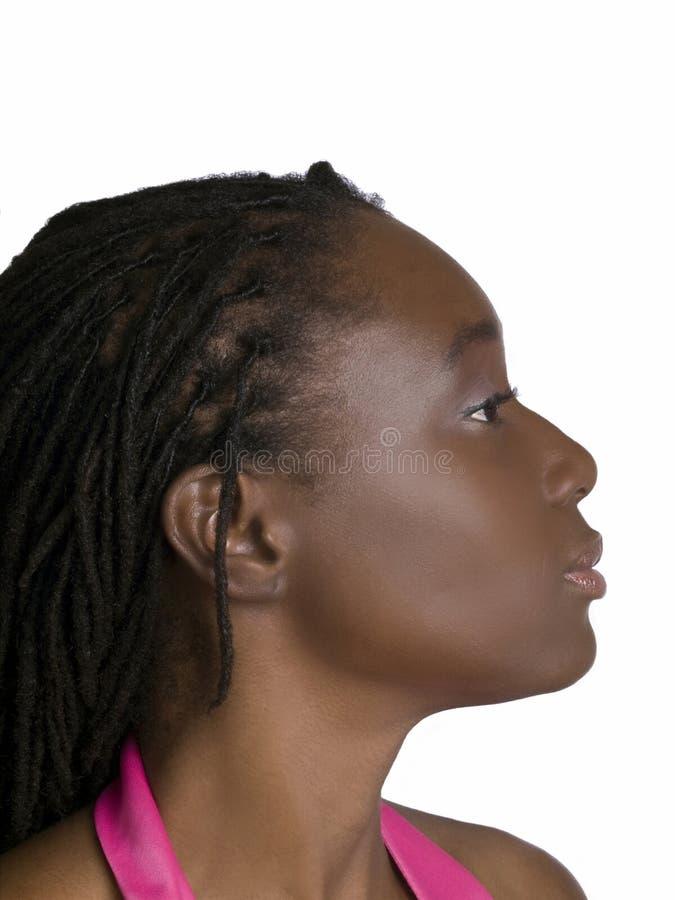 Verticale de profil de jeune femme de couleur attirante photographie stock libre de droits