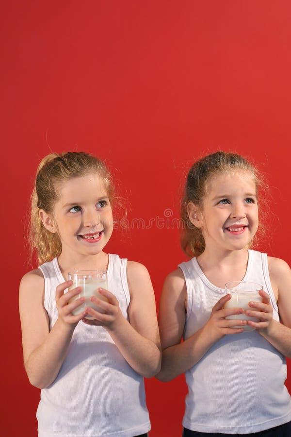 Verticale del latte alimentare dei gemelli fotografia stock