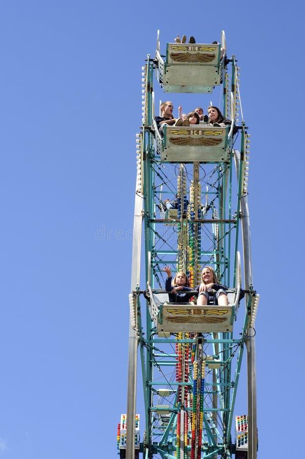 Verticale della rotella di Ferris fotografia stock