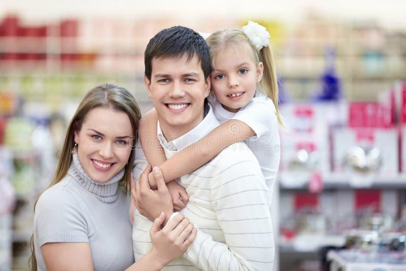 Verticale des familles de sourire images stock