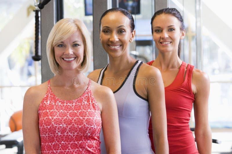 Verticale des femmes à la gymnastique photos stock