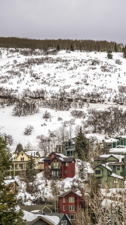 Verticale die Huizen op een berg worden voortgebouwd met sneeuw tijdens wintertijd wordt bedekt royalty-vrije stock foto's