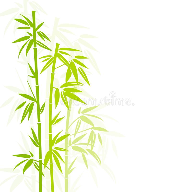 Verticale en bambou verte d'usine dans l'ombre carrée de fond illustration de vecteur