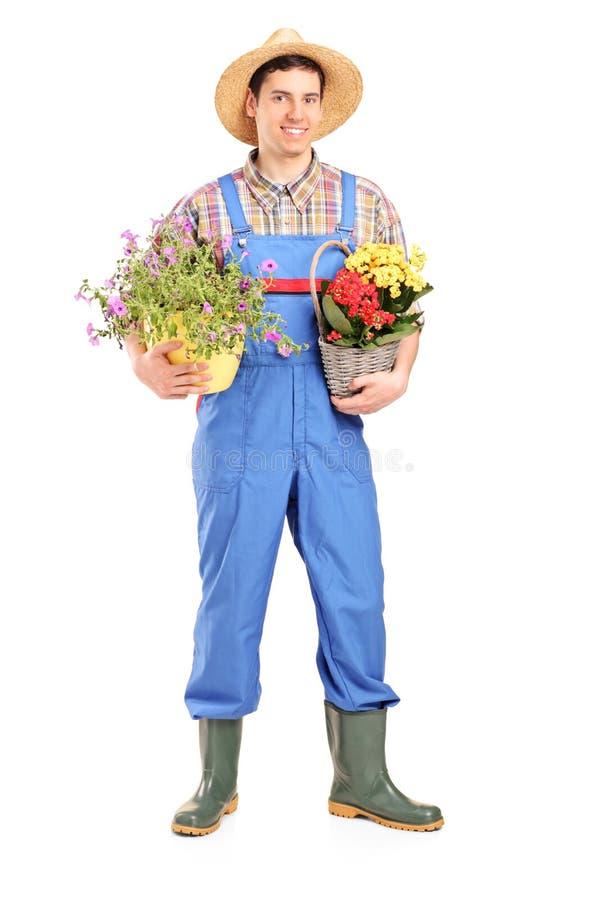 Verticale intégrale d'un jardinier mâle retenant des centrales image stock