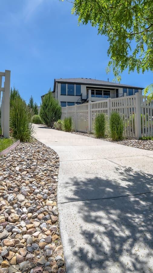 Verticale kaderboom in het midden van een beton en steenweg tegen huizen en blauwe hemel stock foto