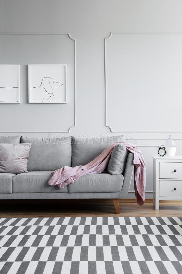 Verticale mening van monochromatische woonkamer met grijs en wit meubilair, en gevormde deken op de vloer stock foto