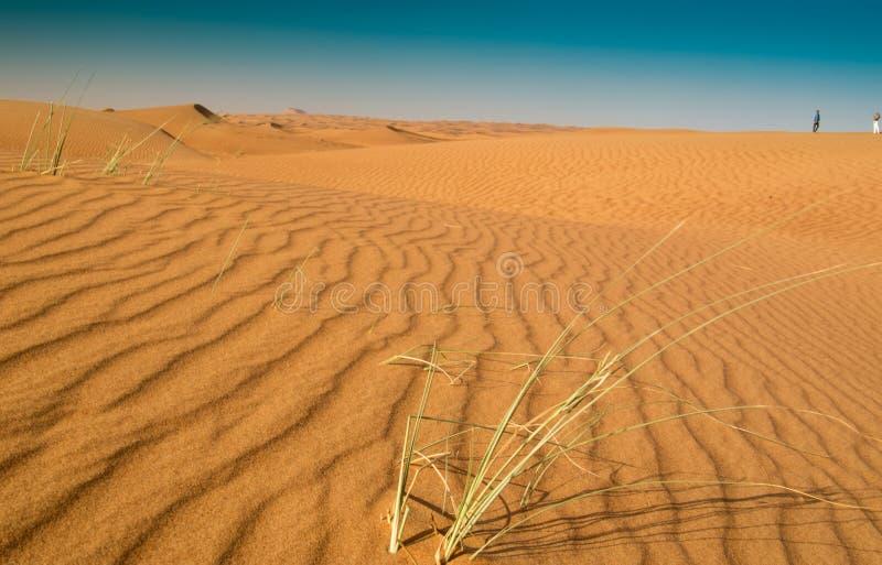 Verticale zandpatronen in de woestijn van Sharjah stock foto