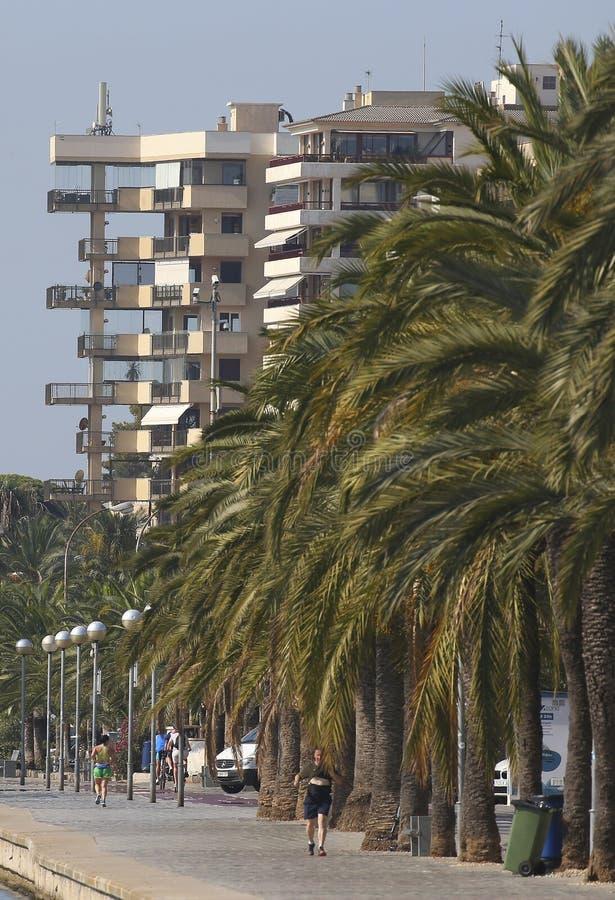 Verticasl marin de bâtiments de promenade de Palma de Majorque photographie stock libre de droits