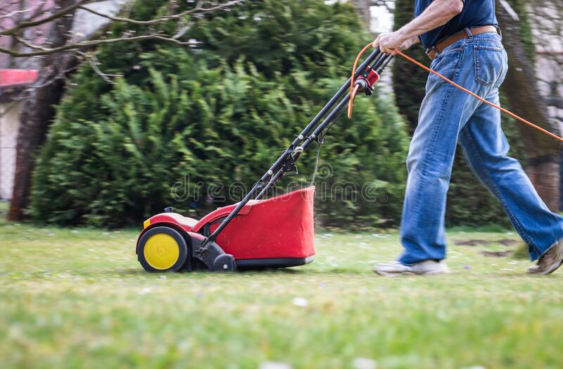 Verticutting by lawn mower in garden royalty free stock images