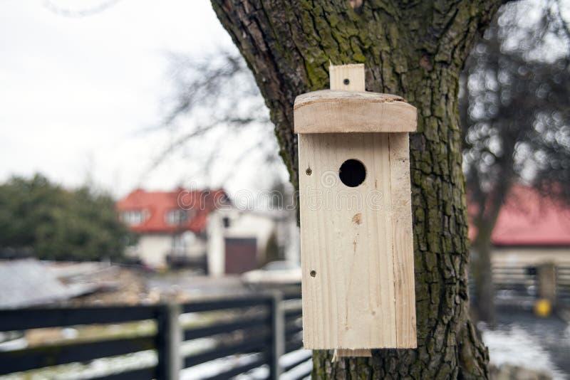 Vertido para los pájaros en árboles Pajarera de madera en el árbol fotos de archivo libres de regalías