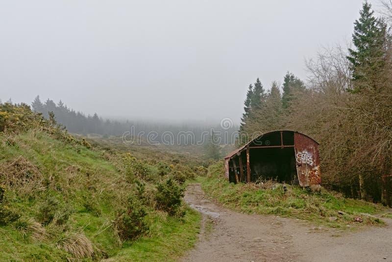 Vertiente abandonada oxidada vieja al lado de una trayectoria a través de un shrubland del bosque y de la aulaga de la picea en l imagen de archivo libre de regalías