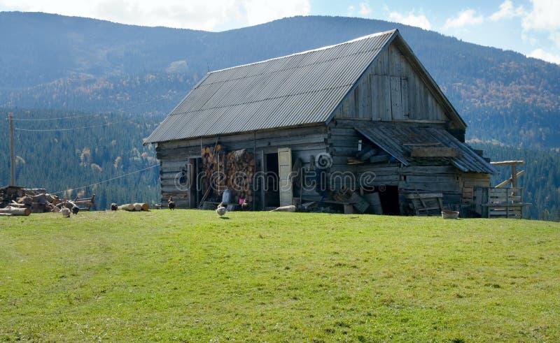 Vertiente en meseta de la montaña foto de archivo libre de regalías