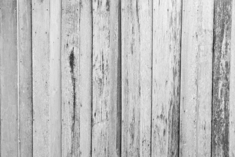 Vertikal linje av Wood bakgrundstextur royaltyfri bild