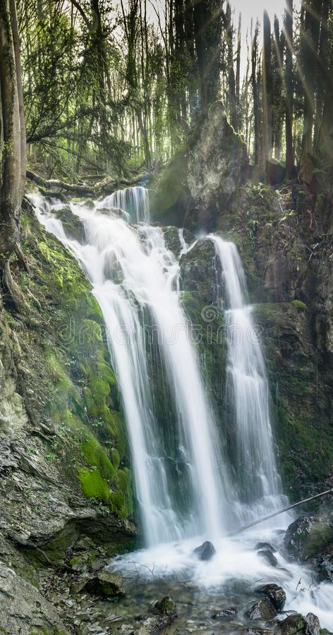 Vertikal panorama av en ursnygg vattenfall i frodiga gröna trän med varmt solljus som skiner till och med träden royaltyfria foton