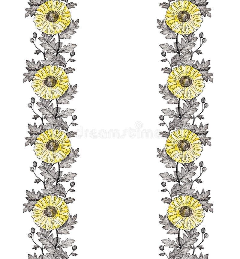 Vertikal prydnad 1 för krysantemum royaltyfri foto