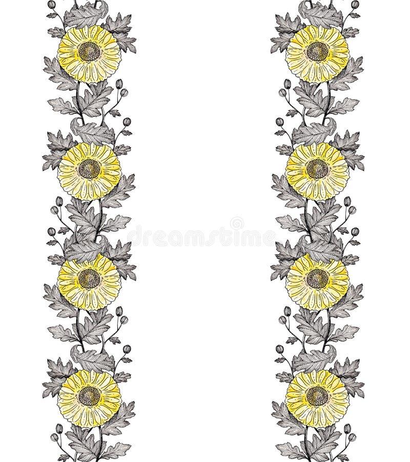 Vertikal prydnad 2 för krysantemum royaltyfria foton