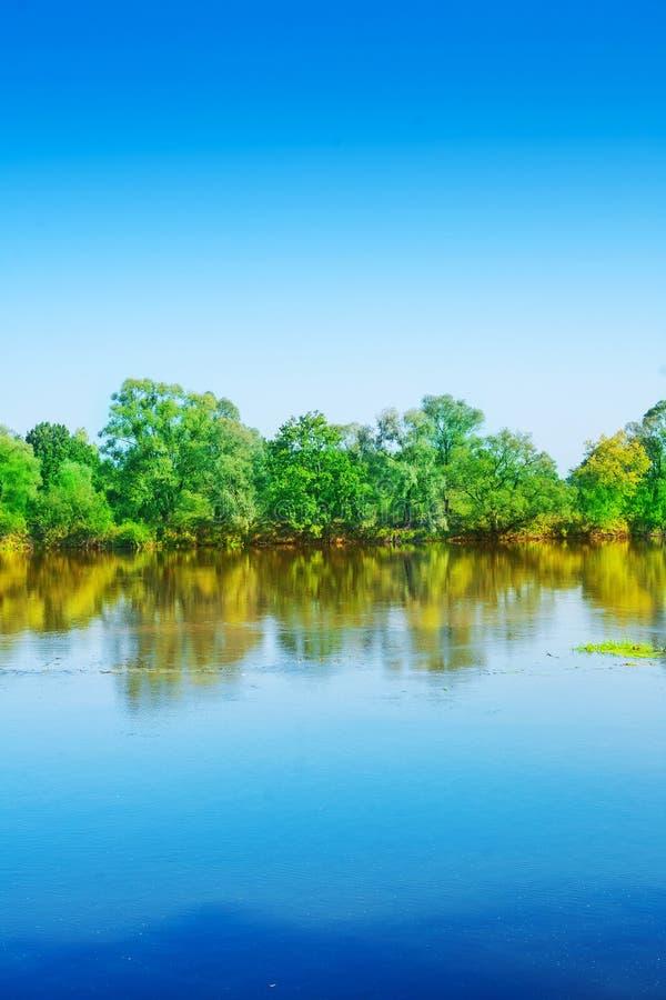Vertikal riverscape royaltyfria foton