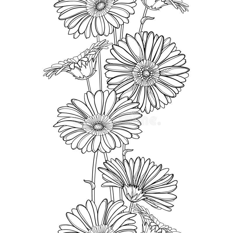 Vertikal sömlös modell för vektor med den översiktsgerbera- eller Gerber blomman i svart på den vita bakgrunden blom- kant vektor illustrationer