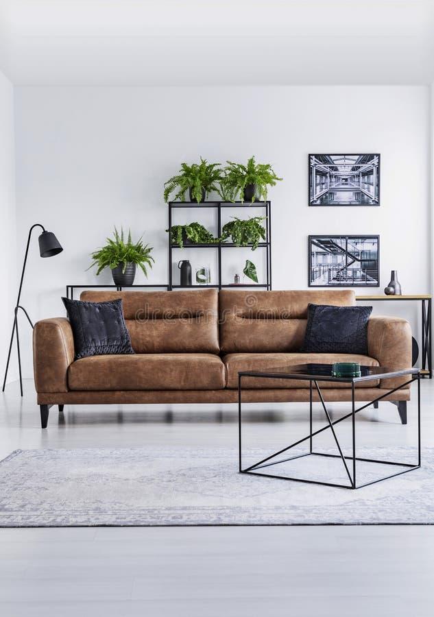 Vertikal sikt av den lyxiga hemmiljön Bruntlädersoffa med bruna kuddar i den mellersta hyllan fotografering för bildbyråer