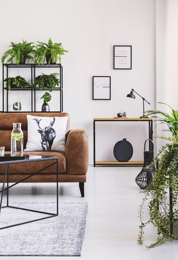 Vertikal sikt av elegant vardagsrum med bruntlädersoffan med kudden, tabellen med karaffen och hyllan mycket av växter arkivbilder