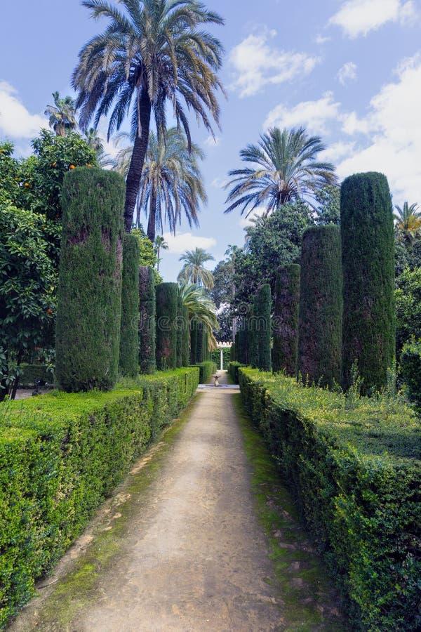 Vertikal sikt av trädgårdarna av den verkliga slotten för Alcà ¡ zar i Seville i Spanien fotografering för bildbyråer