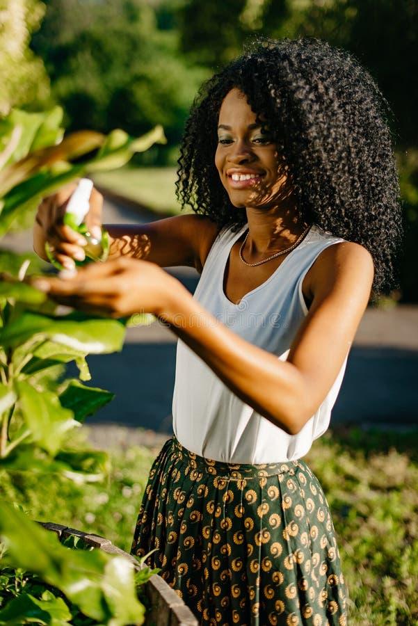 Vertikal solig stående Härlig ung afrikansk flicka med skuggor för charmigt leende och för grönt öga genom att använda den gröna  royaltyfri bild