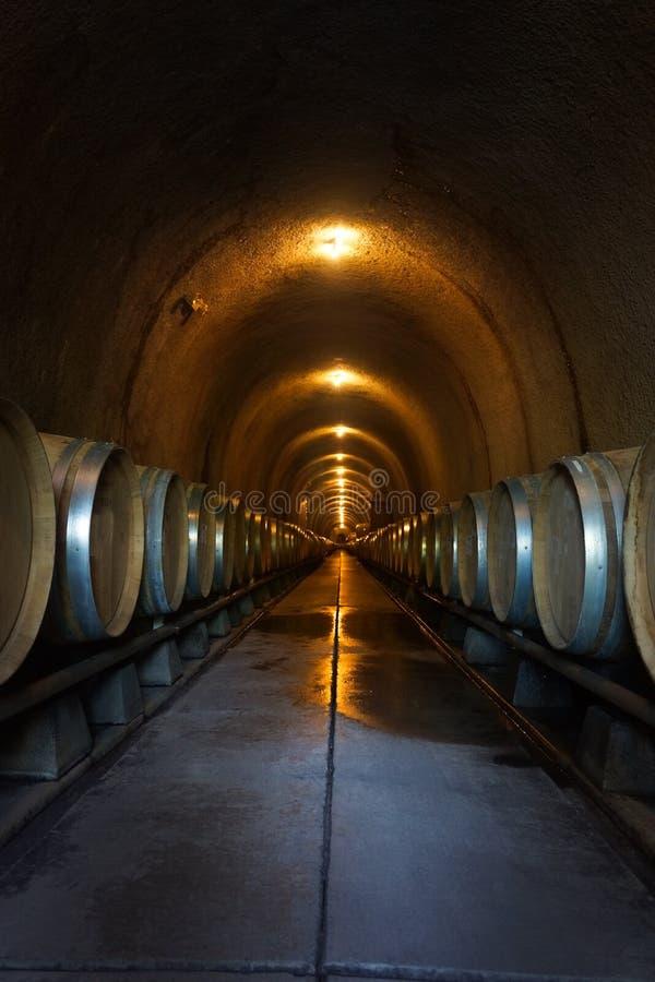 Vertikal vinfatlagring i källaregrotta arkivbild